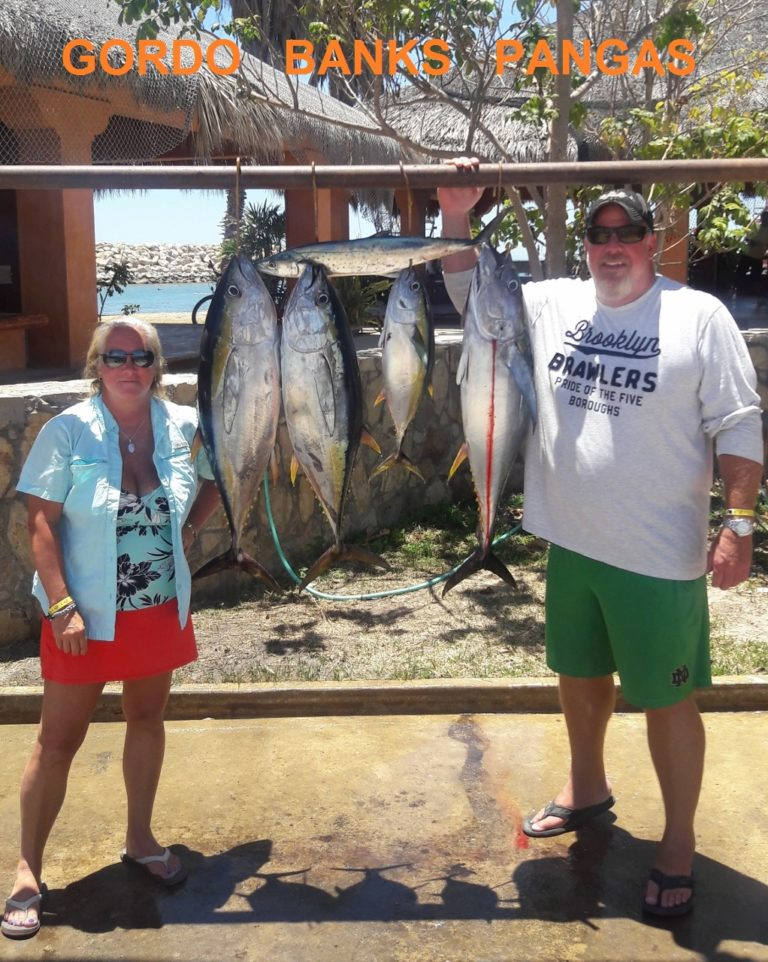 Cabo fishing reports official reports from local charters for Local fishing forecast