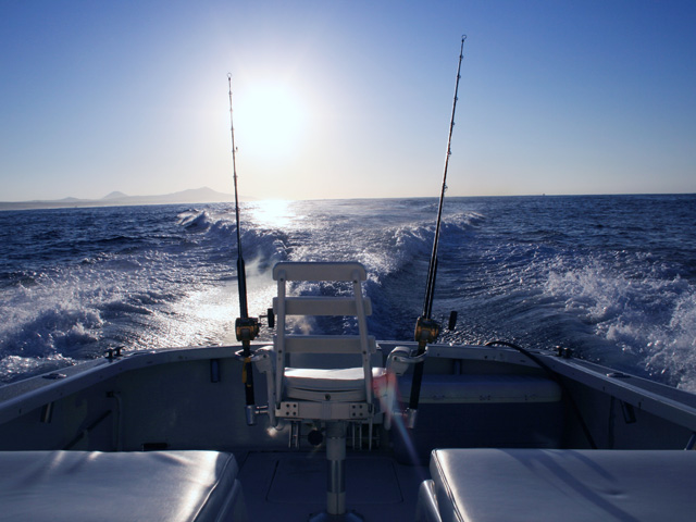 Things to do in cabo fishing itravel cabo for Los cabos fishing charters