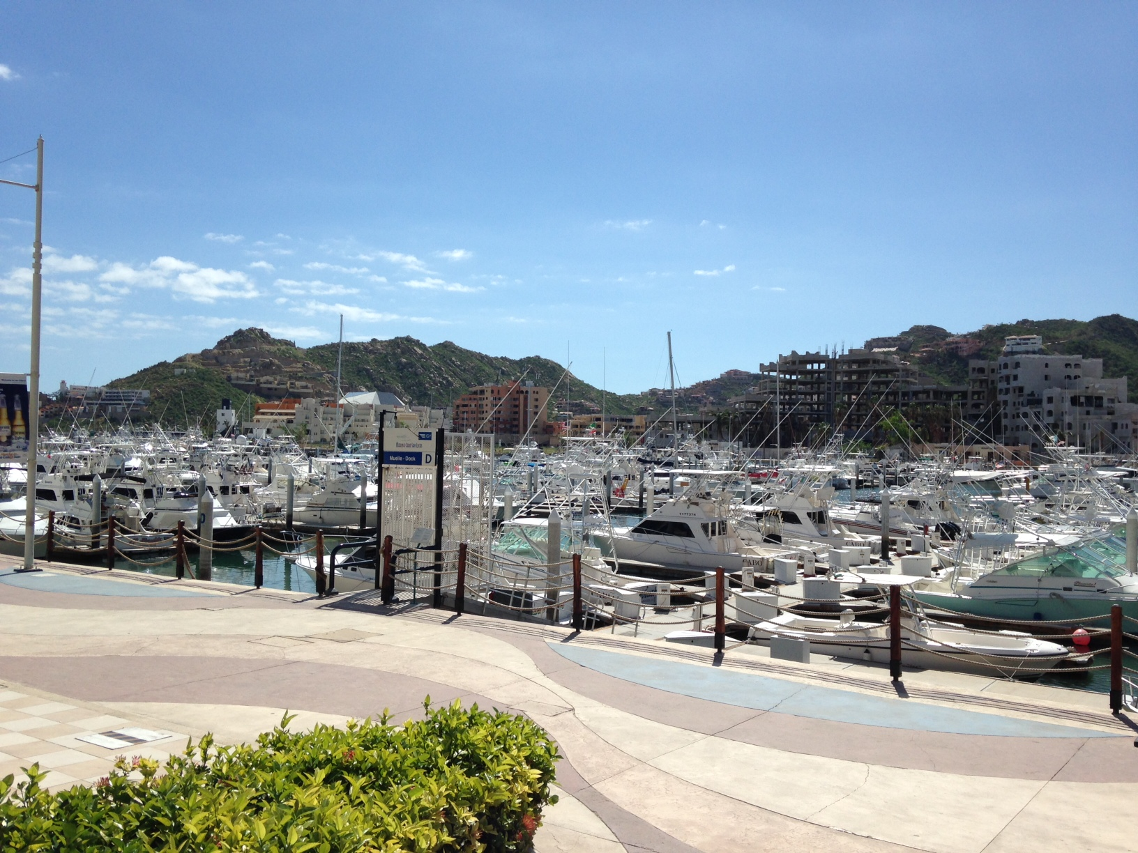 Cabo marina ready for tournament season after Odile