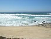 Shipwrecks East Cape surfing